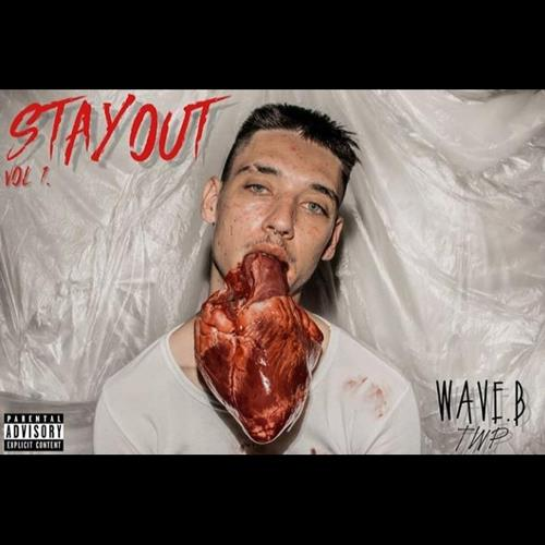Stay Out Vol. 1